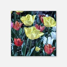 """Red_And_Yellow_Flowers Square Sticker 3"""" x 3"""""""
