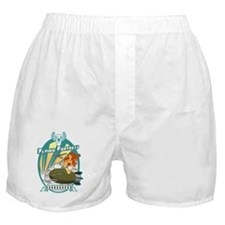 Flying Fortress Boxer Shorts