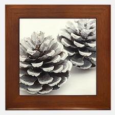 silver pine cones Framed Tile