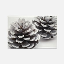 silver pine cones Rectangle Magnet