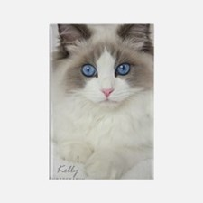 Ragdoll Kitten Rectangle Magnet