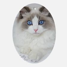 Ragdoll Kitten Oval Ornament