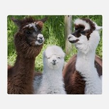 Three different alpacas Throw Blanket