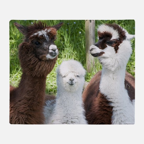 Three different alpacas Throw Blanket
