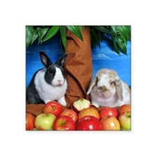 "Dinah and Macintosh Picking Square Sticker 3"" x 3"""