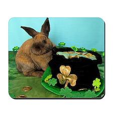 Buddy the Lucky Bunny Mousepad