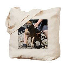 DamienGoing Tote Bag