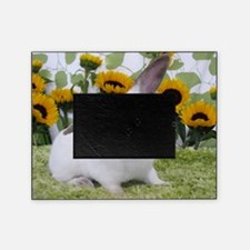Presto with Sunflowers-1 Picture Frame