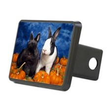 Tiny Tim and Dixie in Pump Hitch Cover