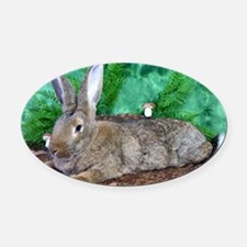 Fezzik in the Woods-2 Oval Car Magnet