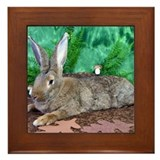 Bunny Framed Tiles