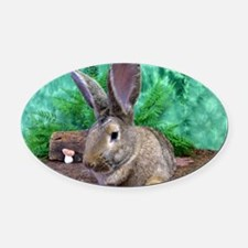 Fezzik in the Woods-1 Oval Car Magnet