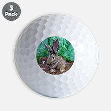 Fezzik in the Woods-1 Golf Ball