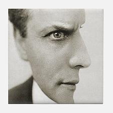Houdini Optical Illusion Horizontal Tile Coaster