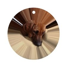 RR PUPPY - GRACE 2 - tunnel Round Ornament
