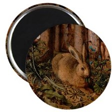 Rabbit In The Woods Magnet
