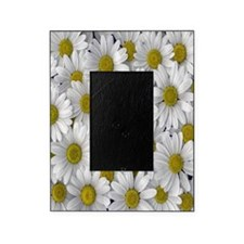 English Daisies Picture Frame