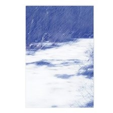 Winter Wilderness Postcards (Package of 8)