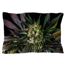 Full Leaf Spectrum Pillow Case