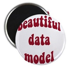 beautiful data model (red) Magnet