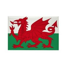 Wales flag decorative Rectangle Magnet