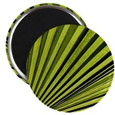 Green Palm Frond Magnet