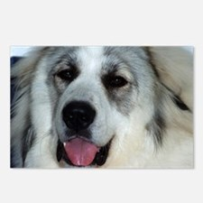 Great Pyrenees Puppy Postcards (Package of 8)