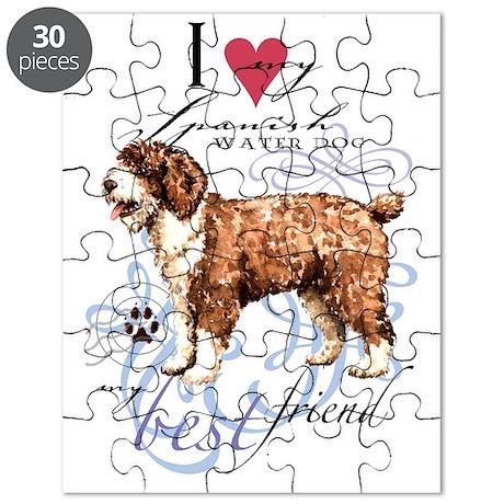 SWD-key2 Puzzle