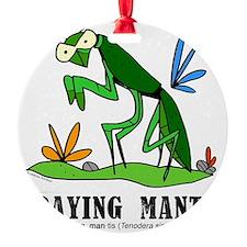 Cartoon Praying Mantis by Lorenzo Ornament