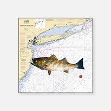 "striped bass nautical showe Square Sticker 3"" x 3"""