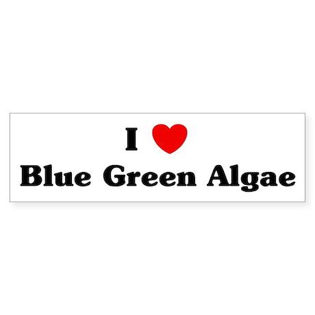 I love Blue Green Algae Bumper Sticker