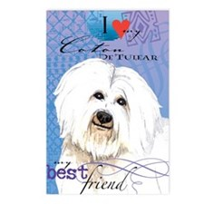 coton-iPad Postcards (Package of 8)