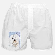 coton-key2-back Boxer Shorts