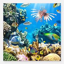 "Sea Life Square Car Magnet 3"" x 3"""