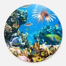 Sea Life Round Car Magnet