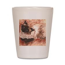 Spirit Ragdoll Siamese Cat Shot Glass