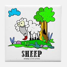 Cartoon Sheep by Lorenzo Tile Coaster