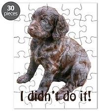 boykin spaniel puppy Puzzle