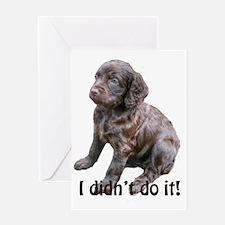 boykin spaniel puppy Greeting Card