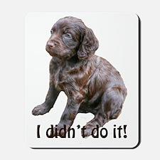 boykin spaniel puppy Mousepad