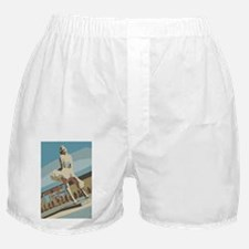 Palm Springs California Boxer Shorts