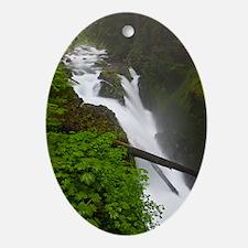 Sol Duc Falls Oval Ornament