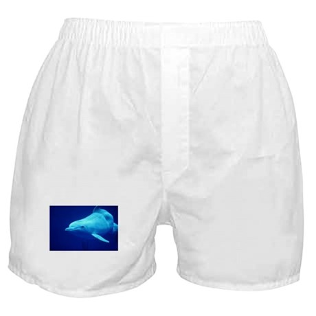 Dolphin swimming underwater Boxer Shorts