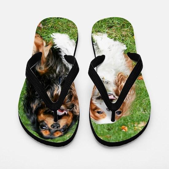 Happy Cavalier King Charles Spaniels Sm Flip Flops