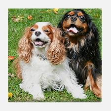 Happy Cavalier King Charles Spaniels  Tile Coaster