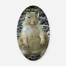 Hows the Diet? Oval Car Magnet