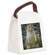 Hows the Diet? Canvas Lunch Bag