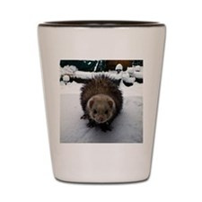 Fuzzy The Great Shot Glass