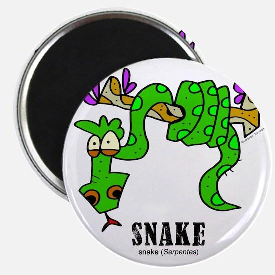 Cartoon Snake by Lorenzo Magnet
