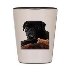 Onyx the Pug Shot Glass